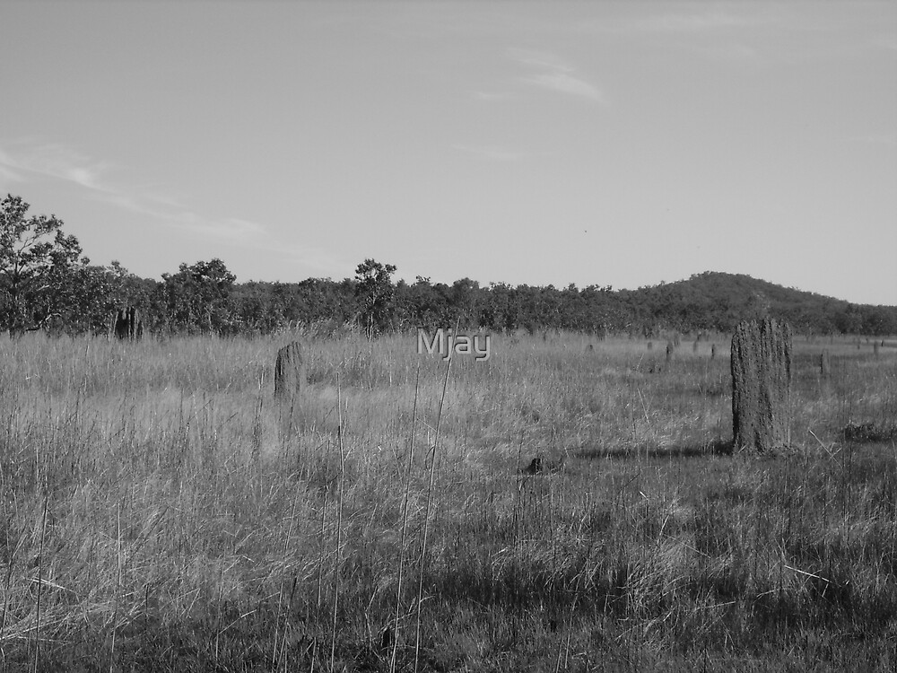 Termite Mounds by Mjay