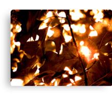 Autumn Joy Canvas Print