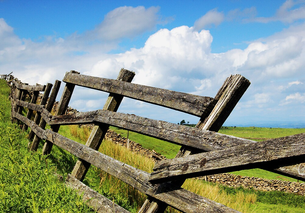 Ricketty Fence by Glen Birkbeck