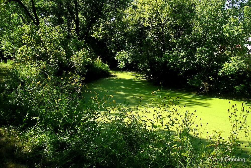 green water by Cheryl Dunning