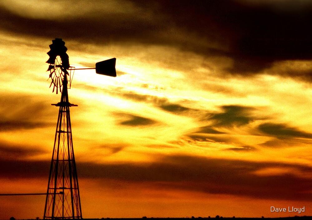 Desert Sunset by Dave Lloyd
