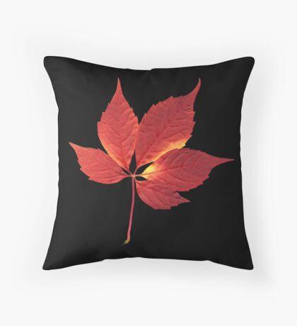 Virginia Creeper - Parthenocissus quinquefolia Throw Pillow