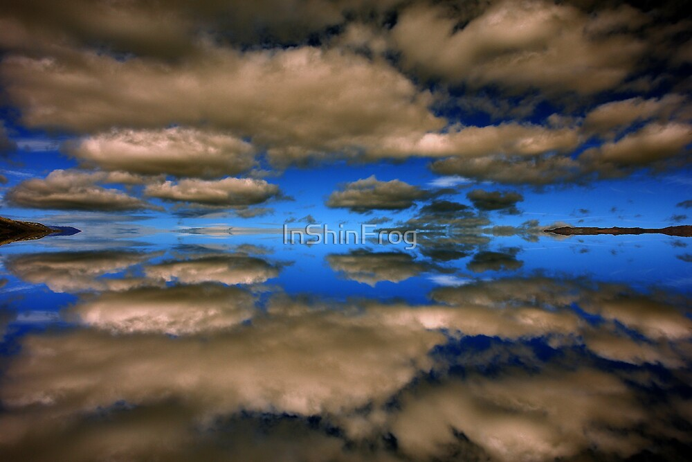 Skies Unlimited by InShinFrog