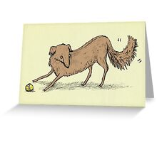 Playful Dog Greeting Card