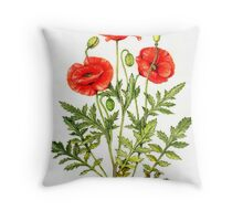 Poppy - Papaver rhoeas Throw Pillow