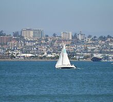 San Diego Bay ~ Great Day For Sailing by Marie Sharp