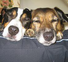 Sleeping Partners by Dave Warren