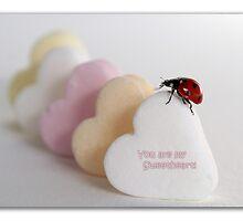 Ladybug with hearts by Ellen van Deelen