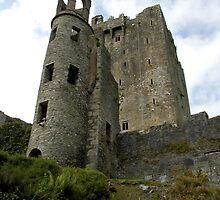 Blarney Castle by miclile