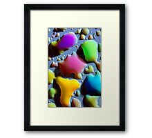 What's on my Stove? Framed Print
