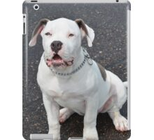 Puppy Sqaut iPad Case/Skin