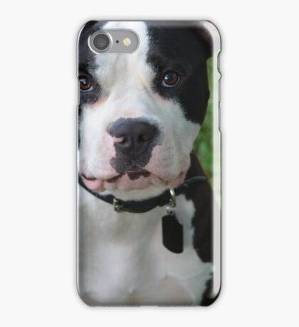 Black & White Pitbull iPhone Case/Skin