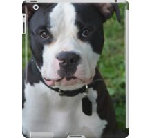 Black & White Pitbull iPad Case/Skin