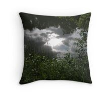 Waters Edge Throw Pillow