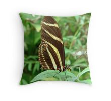 Zebra Longwing Butterfly - Closed Wings Throw Pillow