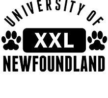 University Of Newfoundland by kwg2200
