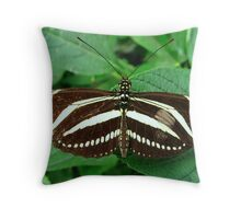 Zebra Longwing Butterfly - Open Wings Throw Pillow