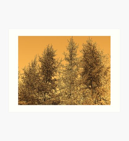 Tree Tops Art Print