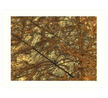 Needles 2 Art Print