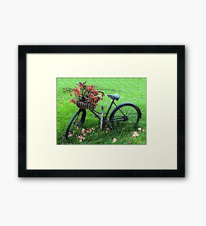 Bicycle Basket Framed Print