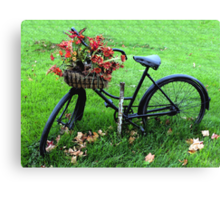 Bicycle Basket Canvas Print