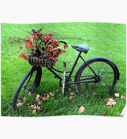Bicycle Basket Poster