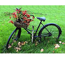 Bicycle Basket Photographic Print