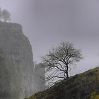 Lonelyness in a Cheddar Crag by Larry Lingard-Davis
