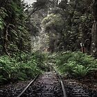 Clarence tunnel by Delightfuldave