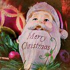 Merry Christmas  by Nicole  Markmann Nelson