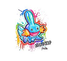 Cute Mudkip Spraypaint Tshirts + More! ' Pokemon ' Photographic Print