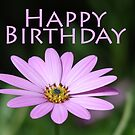 Flower Birthday Card by Andy Harris