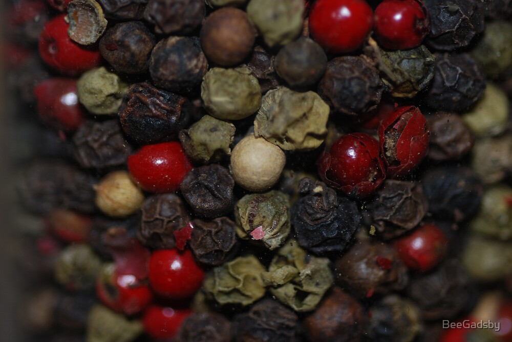 Peppercorns by BeeGadsby