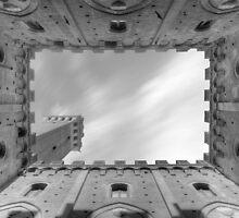 Toscane Siena De Campo Palazzo Publico - Mono by MartinWilliams