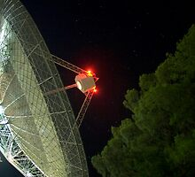 the dish2 by richocam