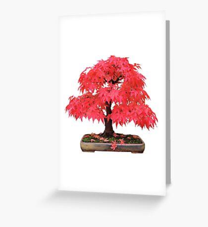 Cherry Maple Greeting Card