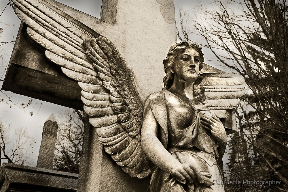 Concrete Angel by Paul Jaffe Photographer