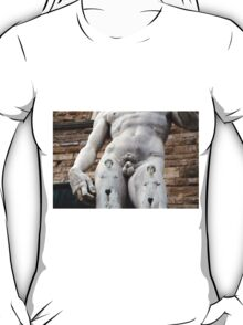 All About Italy. Piece 14 - Florence. David's Tattoos T-Shirt