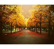 Autumnal Geneva Photographic Print