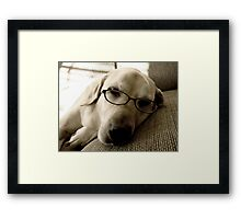 No More Studying...I'm Pooped Framed Print