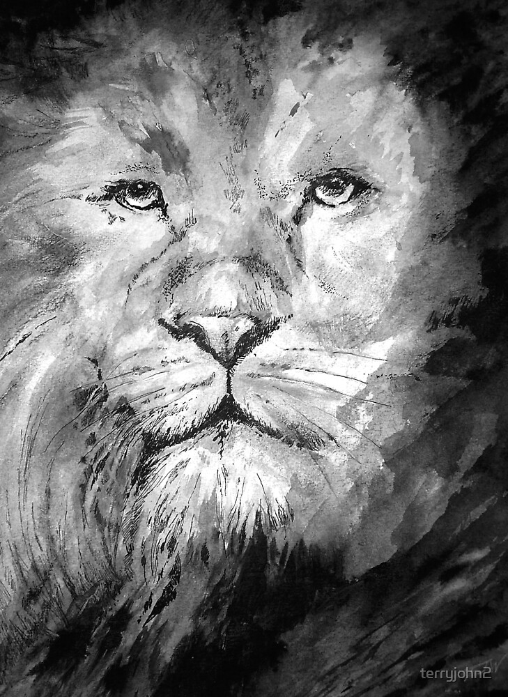 the lion by terryjohn2
