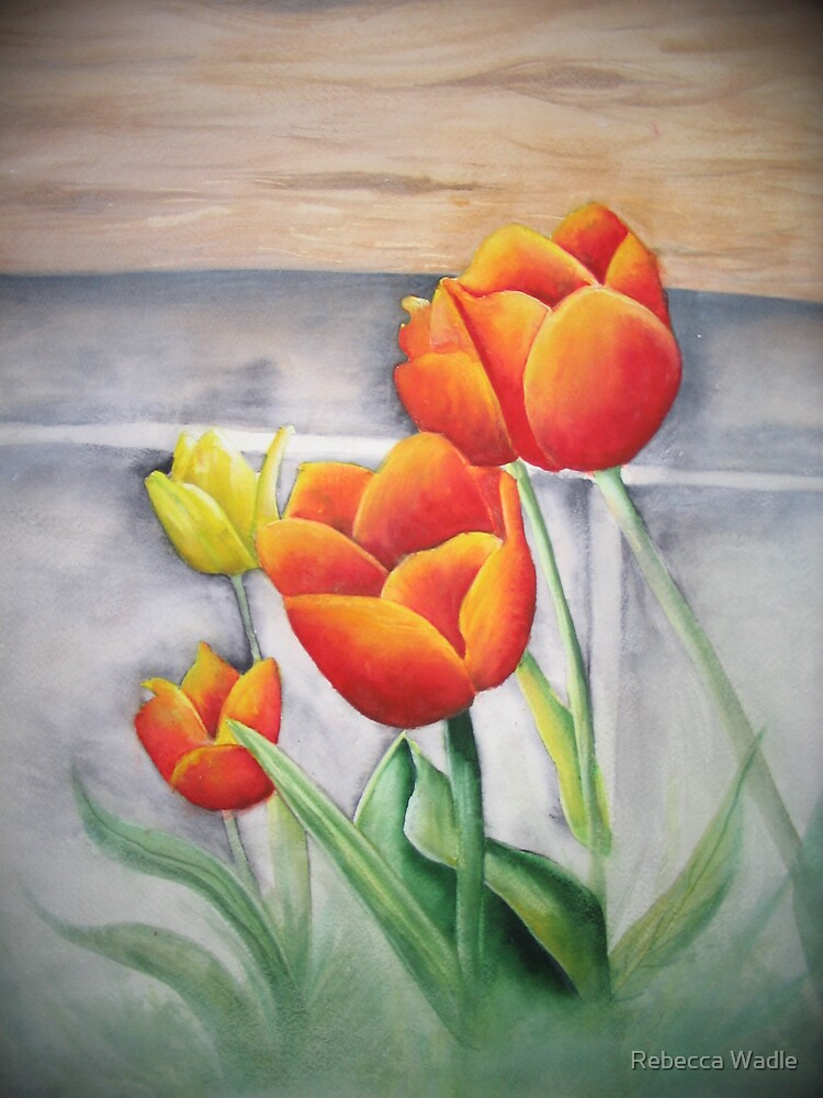 Tulips # 102 by Rebecca Wadle