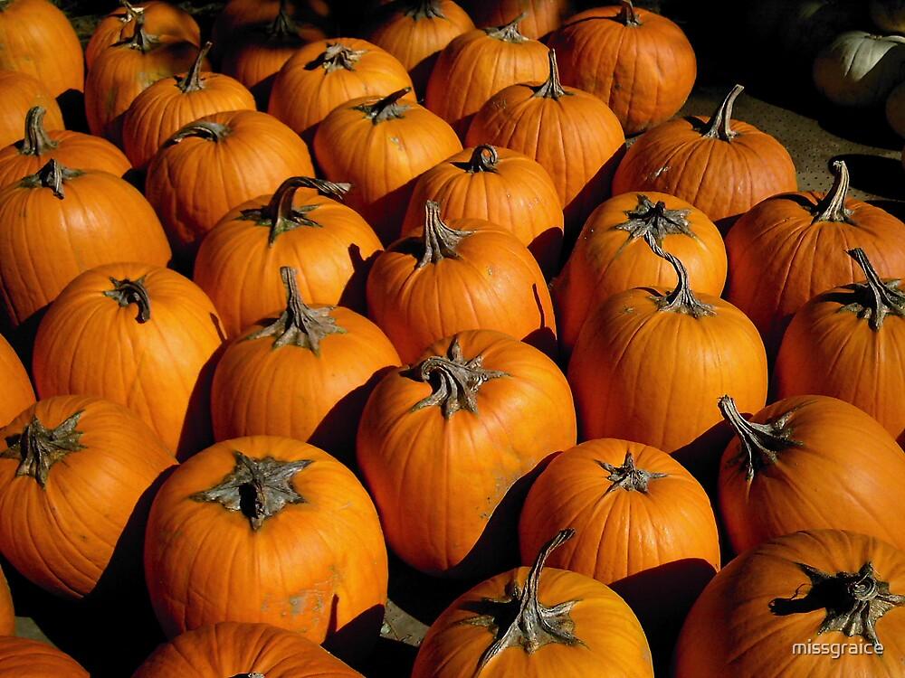 pumpkins by missgraice