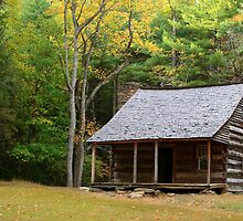 Appalachian Autumn   by Gary L   Suddath