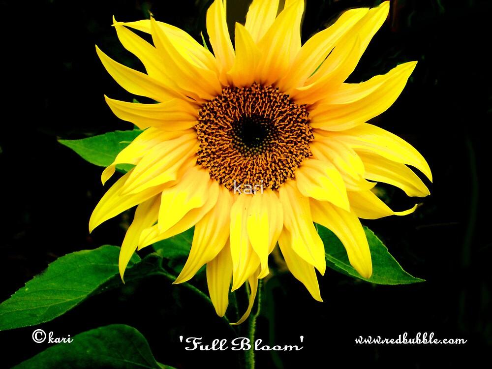 Full Bloom by kari