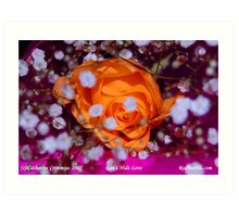 Cant Hide Love-- flower power project Art Print