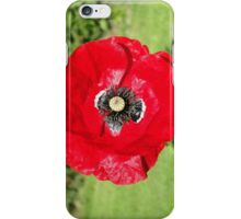The Red Poppy iPhone Case/Skin