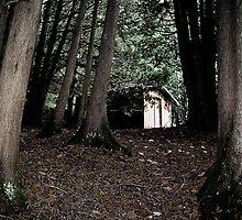 The Woodshed by nikspix