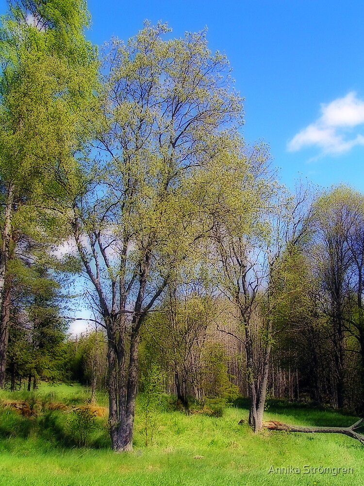Springtime by Annika Strömgren