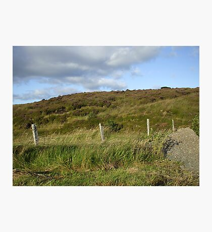 Heather banks at Pigeon top, county Tyrone, N.Ireland Photographic Print